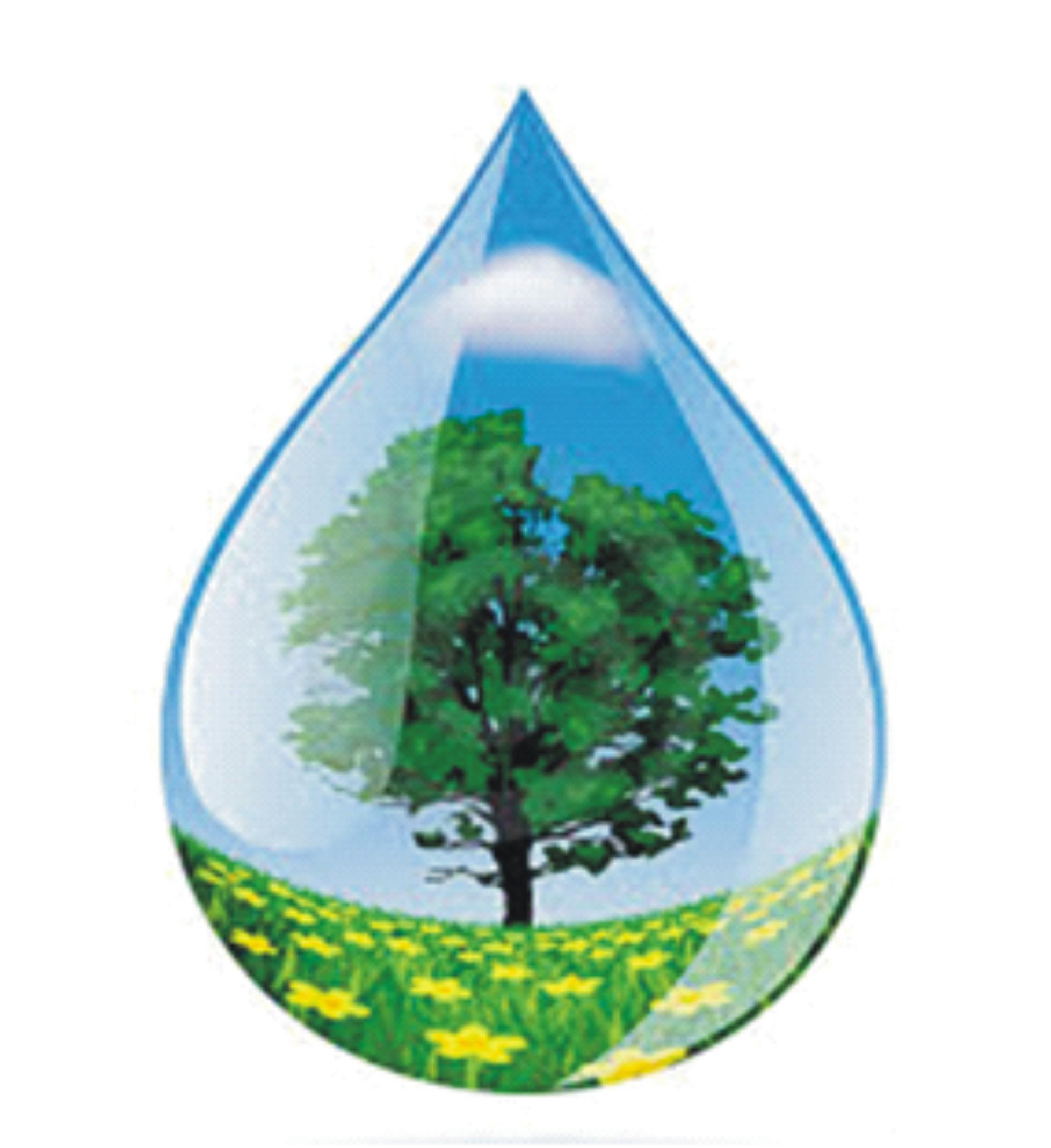 Secretarias de meio ambiente e educa o de lorena for Mural sobre o meio ambiente