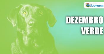 Prancheta 2DEZ-VERDE