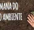 Prancheta 2sem-mamb