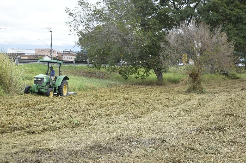 Paque Rodovia - Limpeza de Terreno (3)