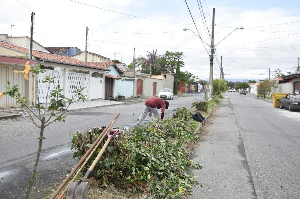 Poda de Árvores - Vila Nunes (2)