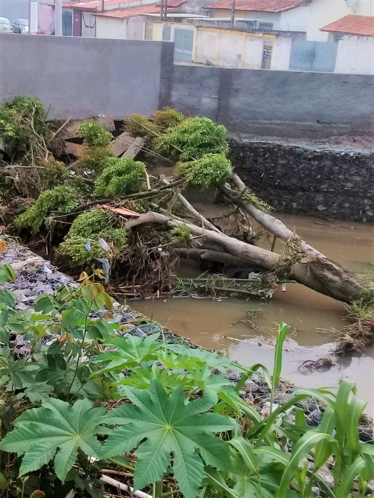 Chuvas torrenciais causam danos em Lorena e Região (1)