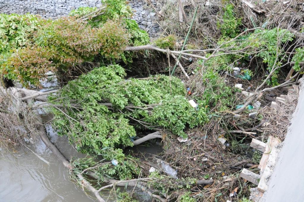 Chuvas torrenciais causam danos em Lorena e Região (4)