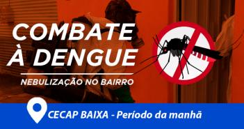capa-dengue
